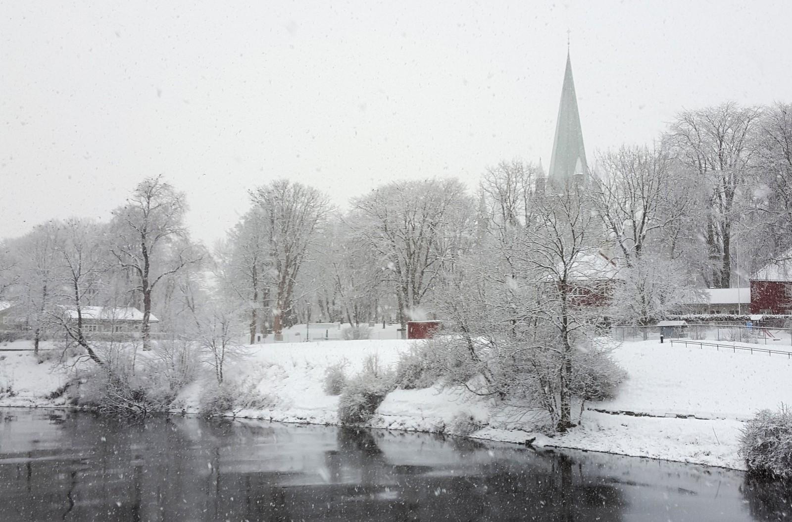Vinter ved Nidelva