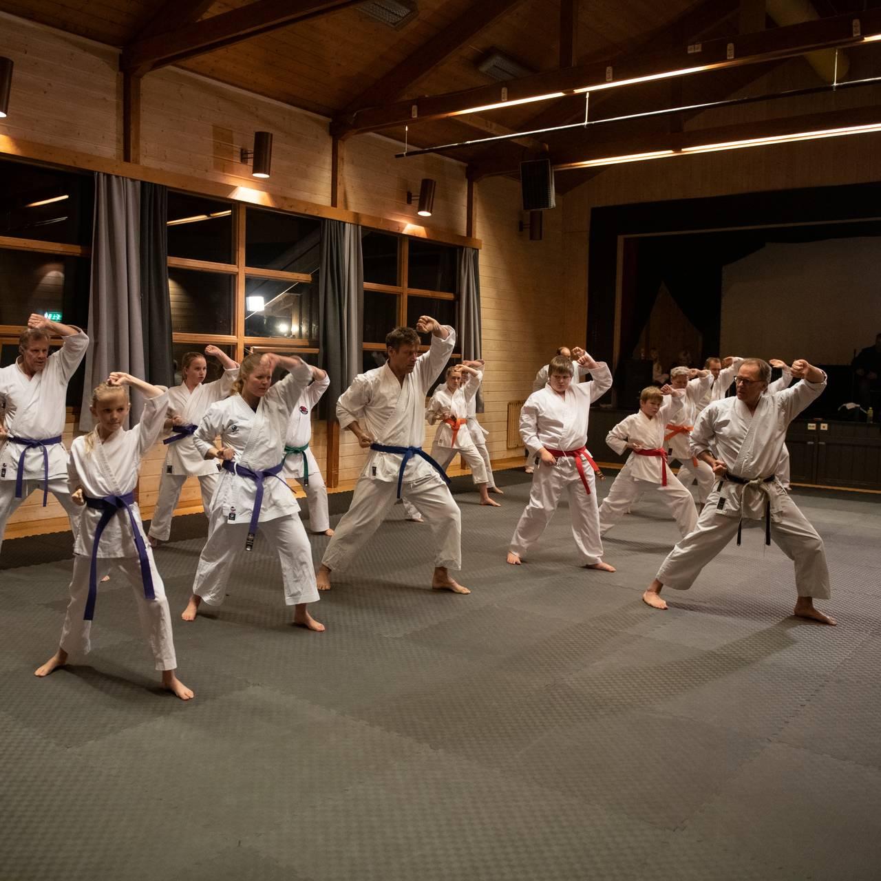Telemark Karate - Øyfjell