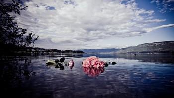 Rose Utøya
