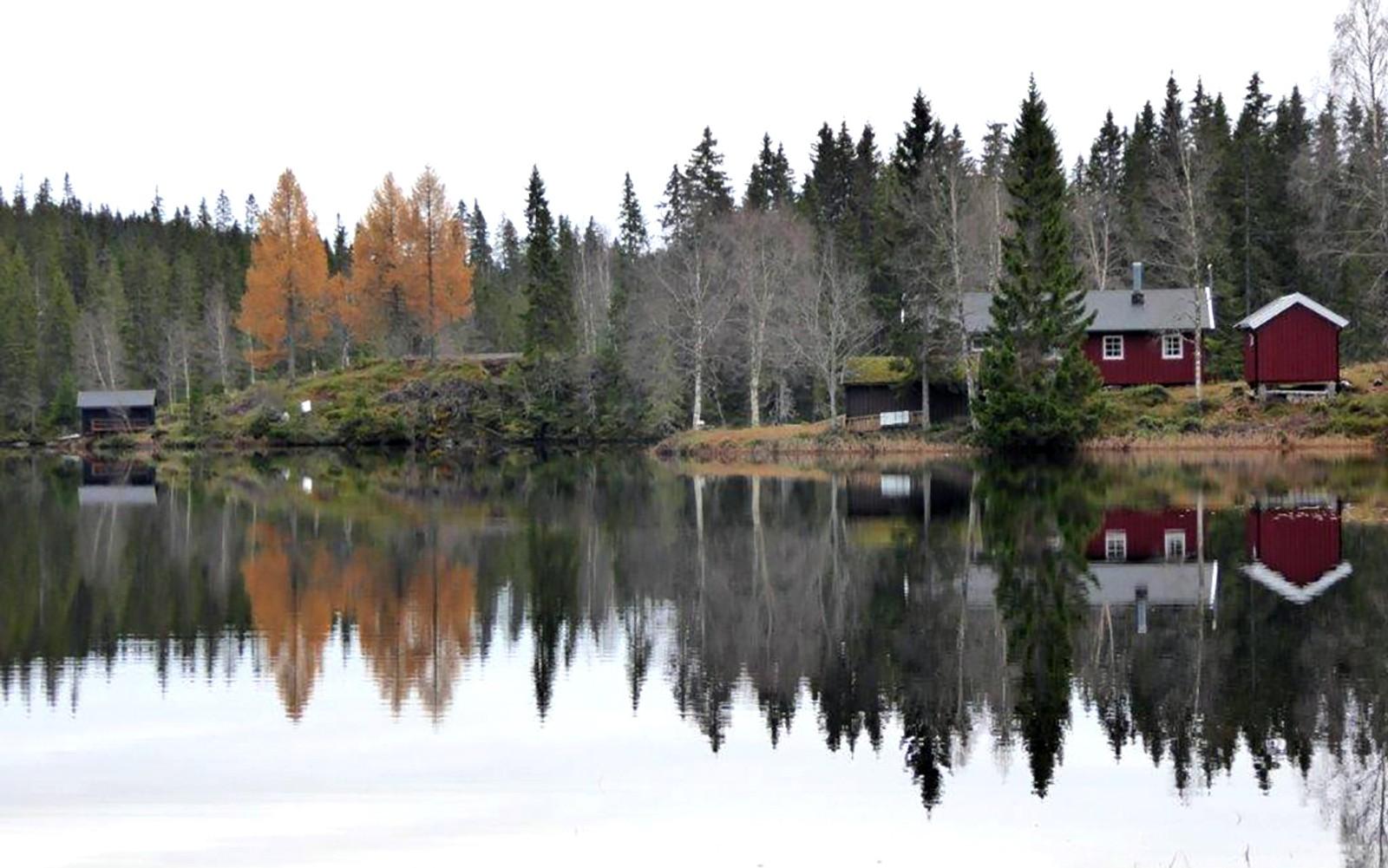 Høst ved Buvatnet,Stjørdal