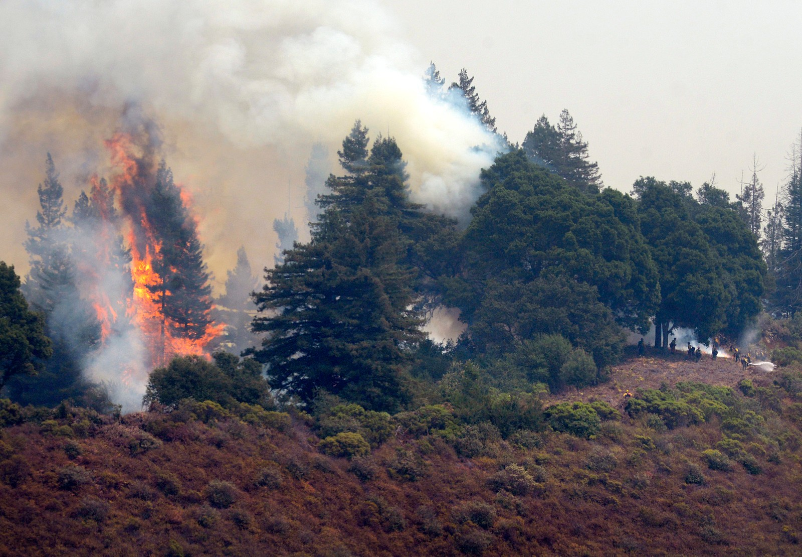 brannmannskap jobber med å slukke skogbrann nær landsbyen Big Sur lørdag.