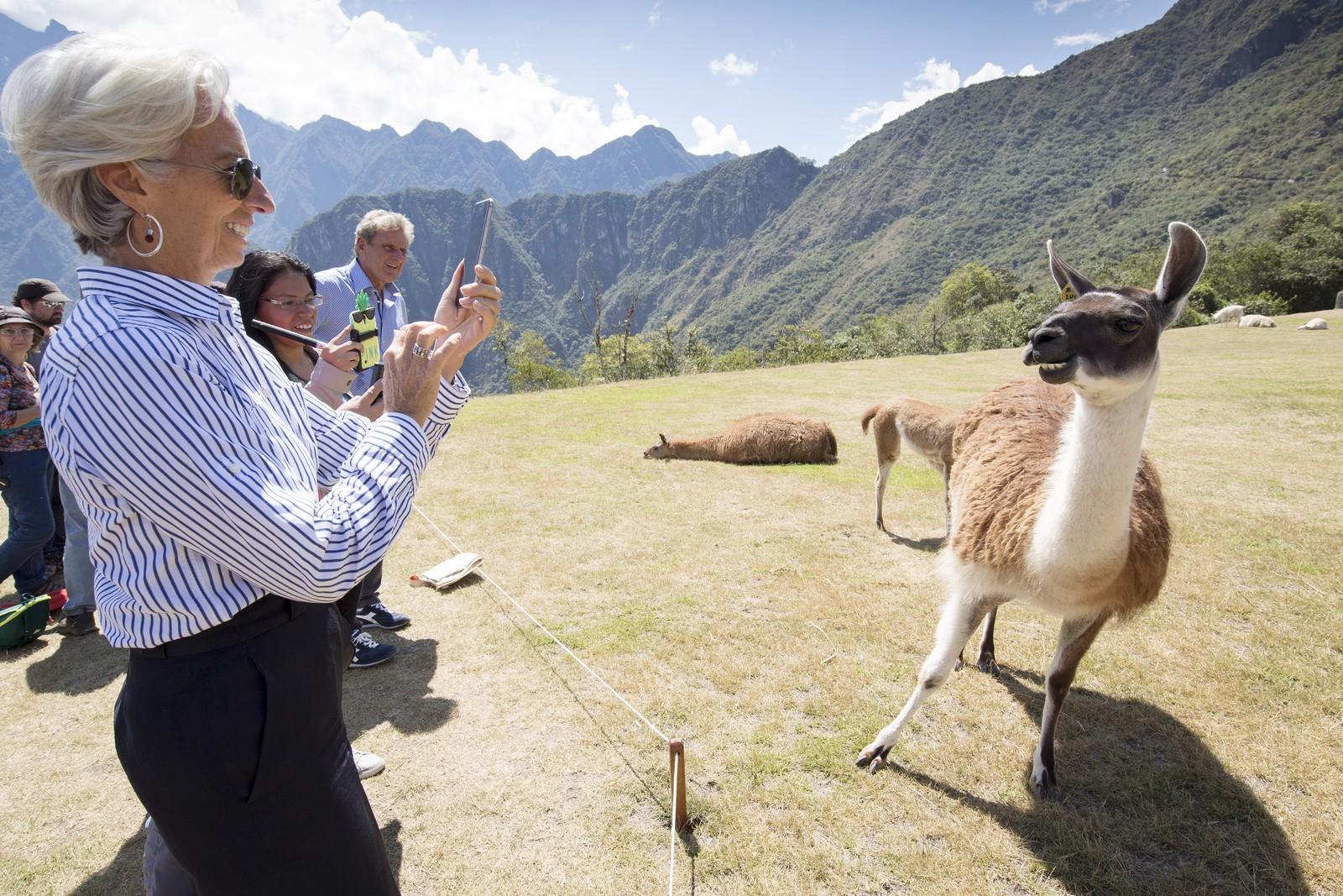 "Pengefond-sjef IMF Managing Christine Lagarde tar bilde av en ""smilende"" lama under sitt besøk i Machu Picchu i Peru i oktober."