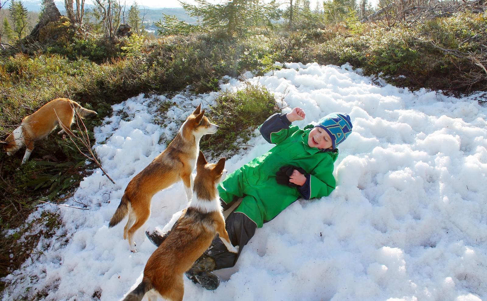 Den siste snøen på Snøton i Orkdal