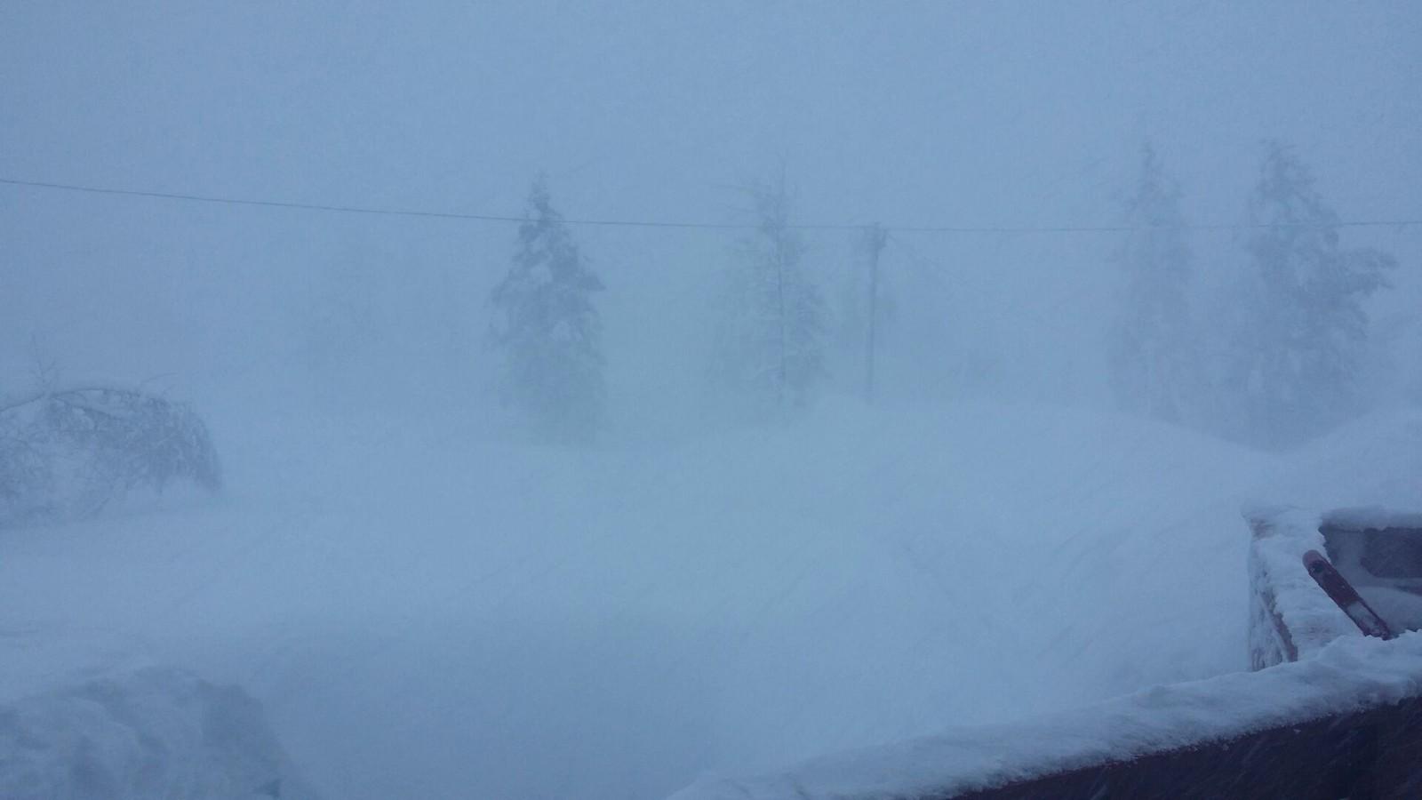 KVAMSKOGEN: En leser fra Kvamskogen har sendt dette bildet, og forteller at det sikkert har kommet en meter snø det siste døgnet.
