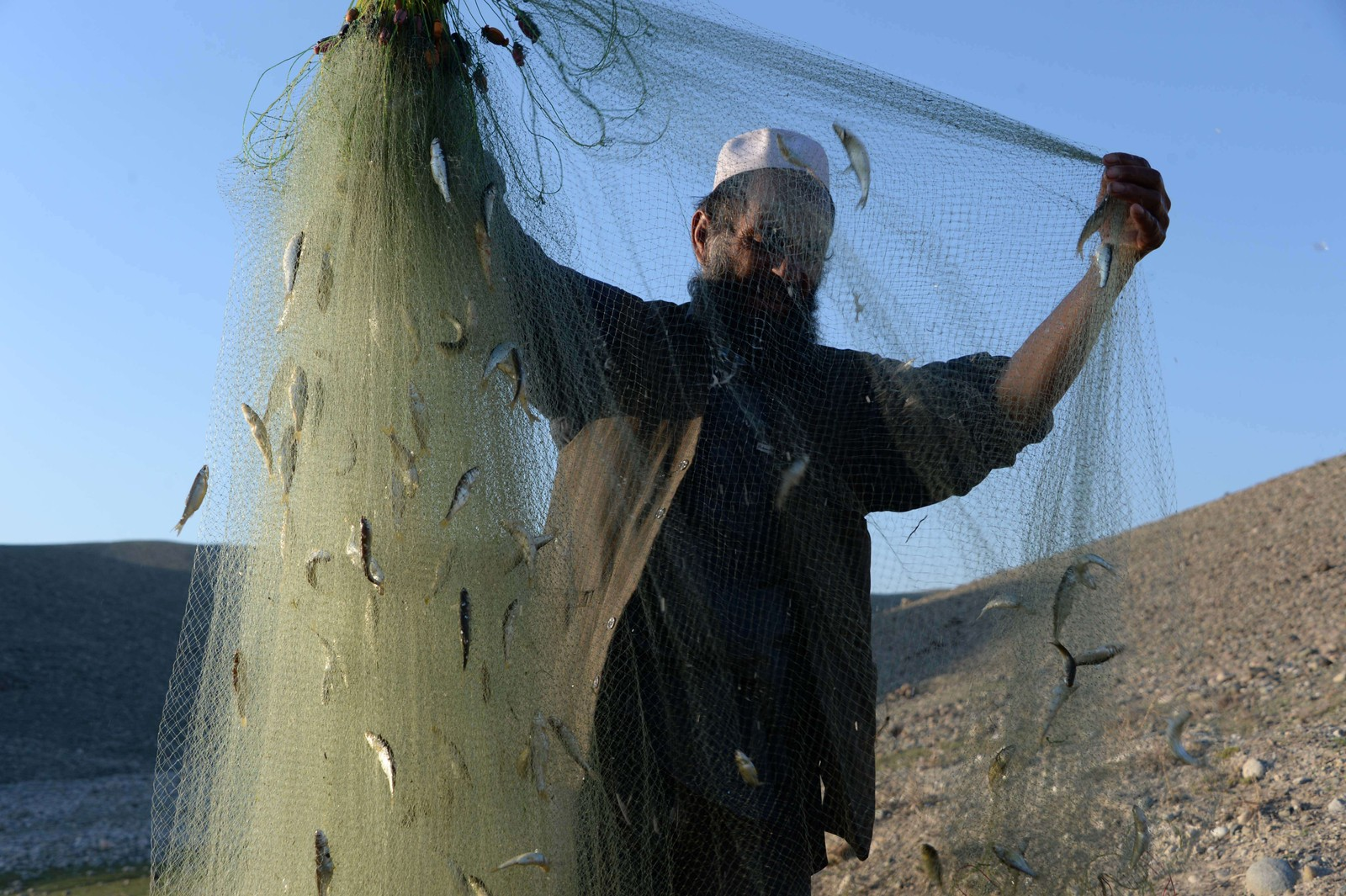 En afghansk fisker betrakter dagens fangst ved en elv i Mehtar Lam i Laghman provinsen.
