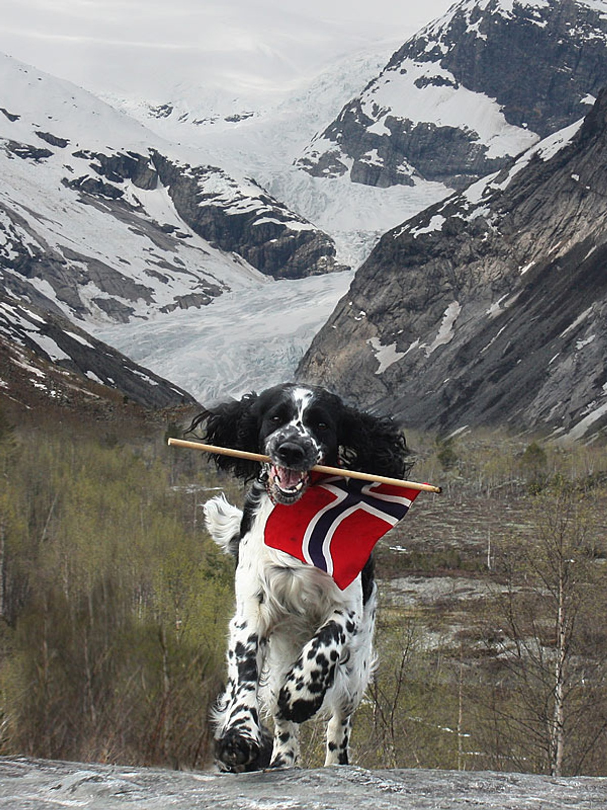 aksel og tone sogn og fjordane