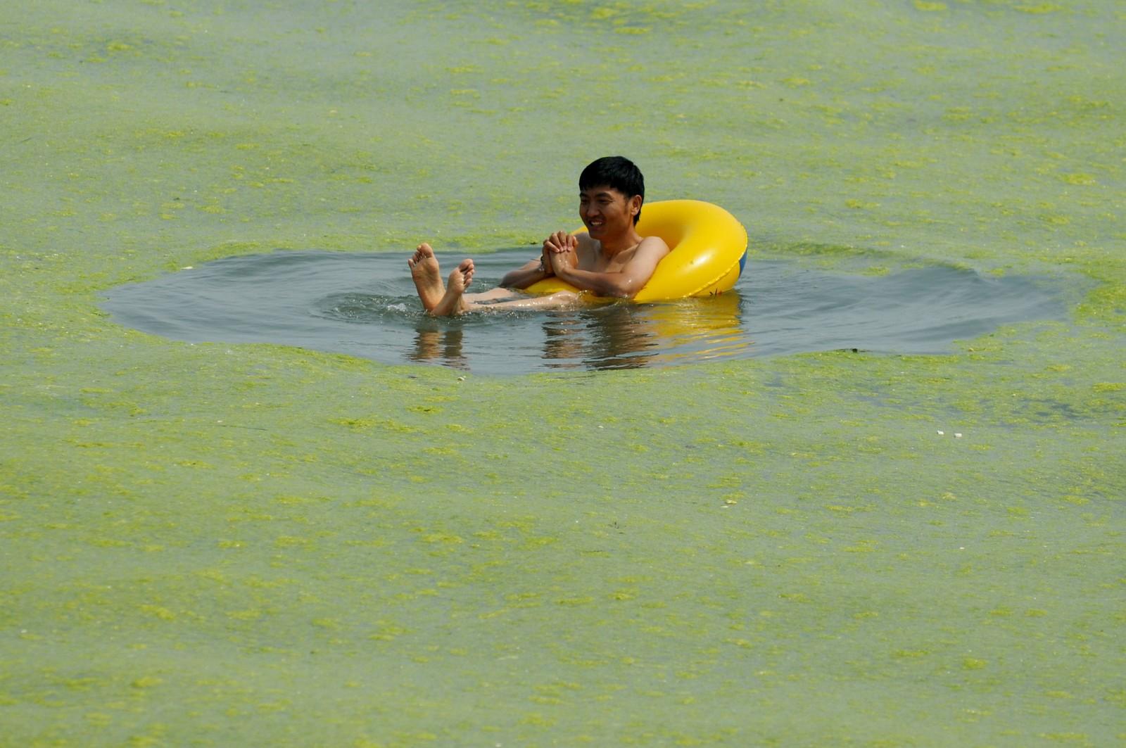 Hvert år møter strandglade kinesere i Qingdao-provinsen alger når de skal bade. Hvorfor dette skjer, er foreløpig usikkert.