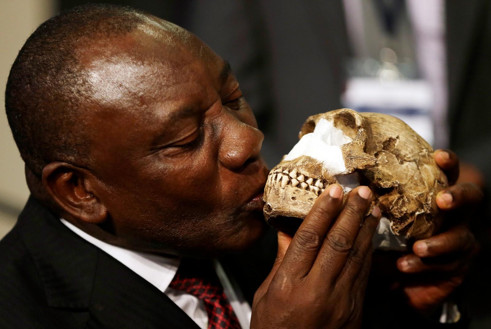 En ny menneskeart skal ha blitt funnet i en hule i Sør-Afrika denne uka. Landets vise-president Cyril Ramaphosa, kysser her en kopi av funnet, kalt homo naledi.