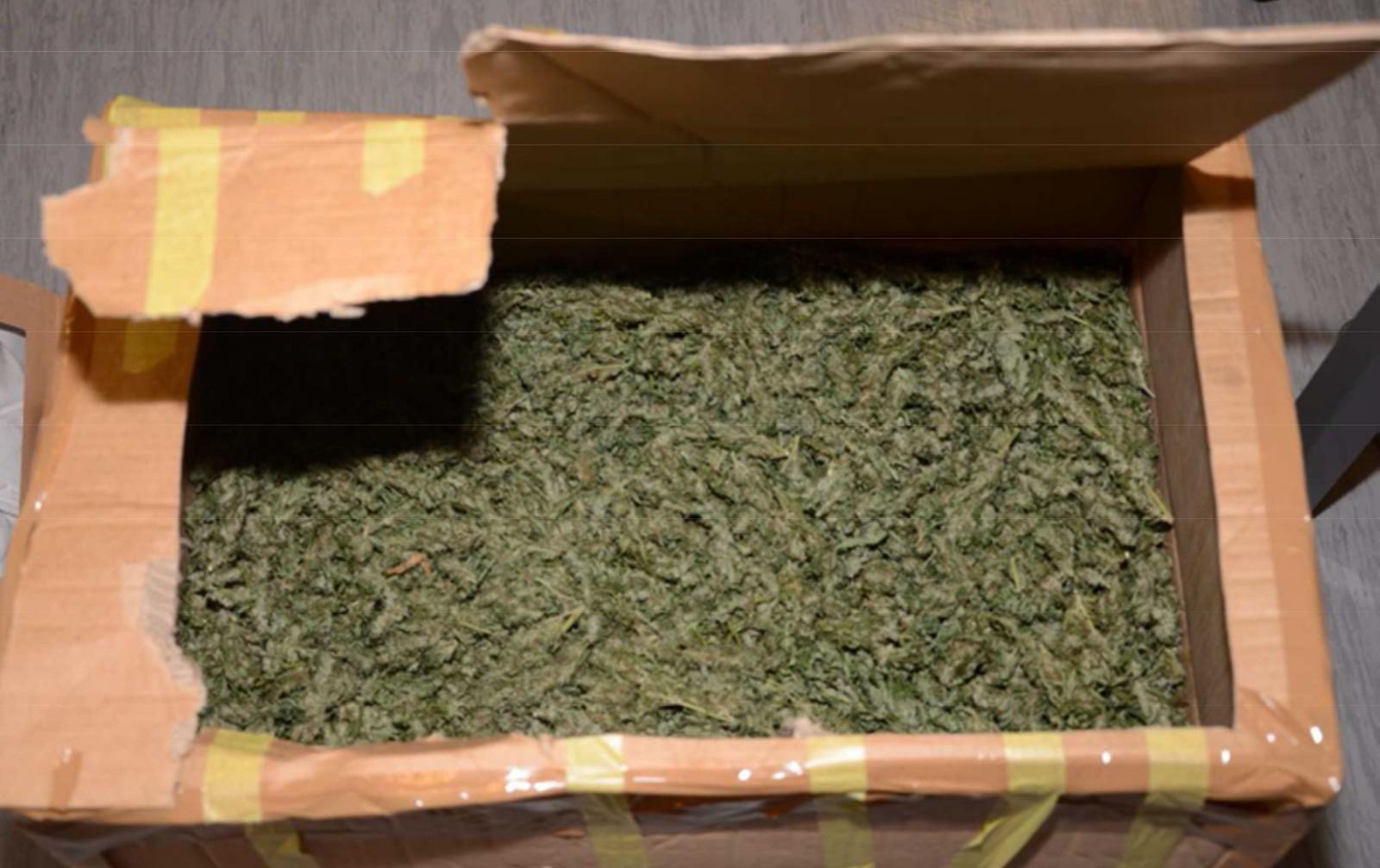 Narkotikabeslag cannabis.