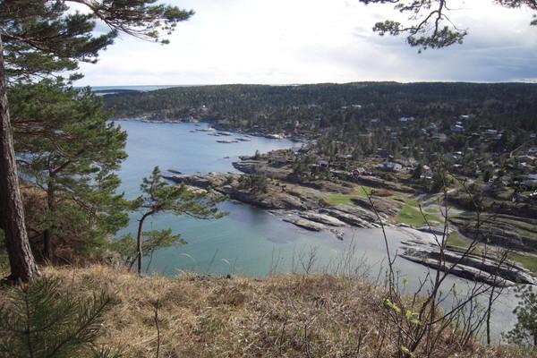 Rognsåsen - Foto: Steinar Skilhagen