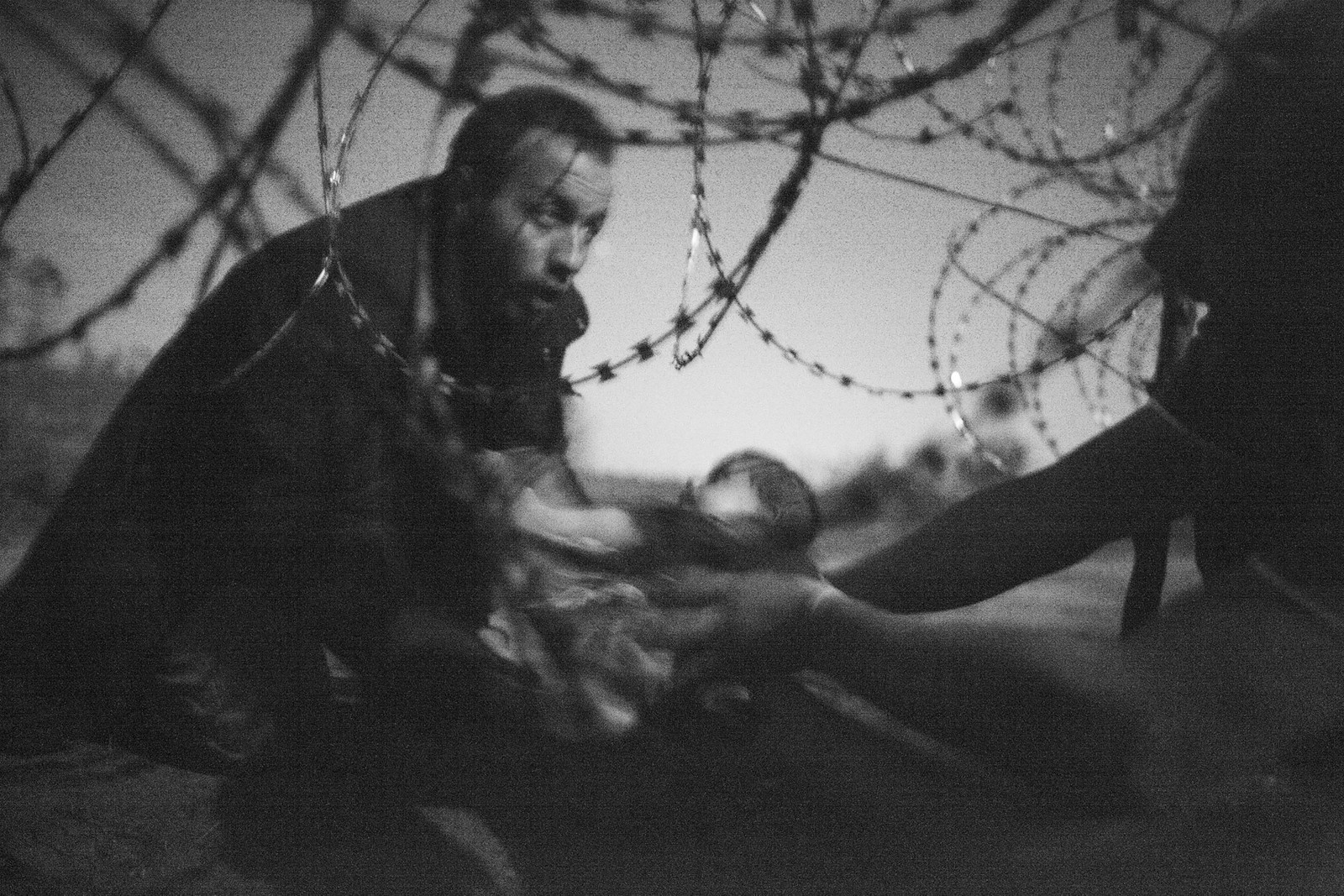 Hope for a New Life av Warren Richardson vant i kategoriene World Press Photo of the Year og Spot News.