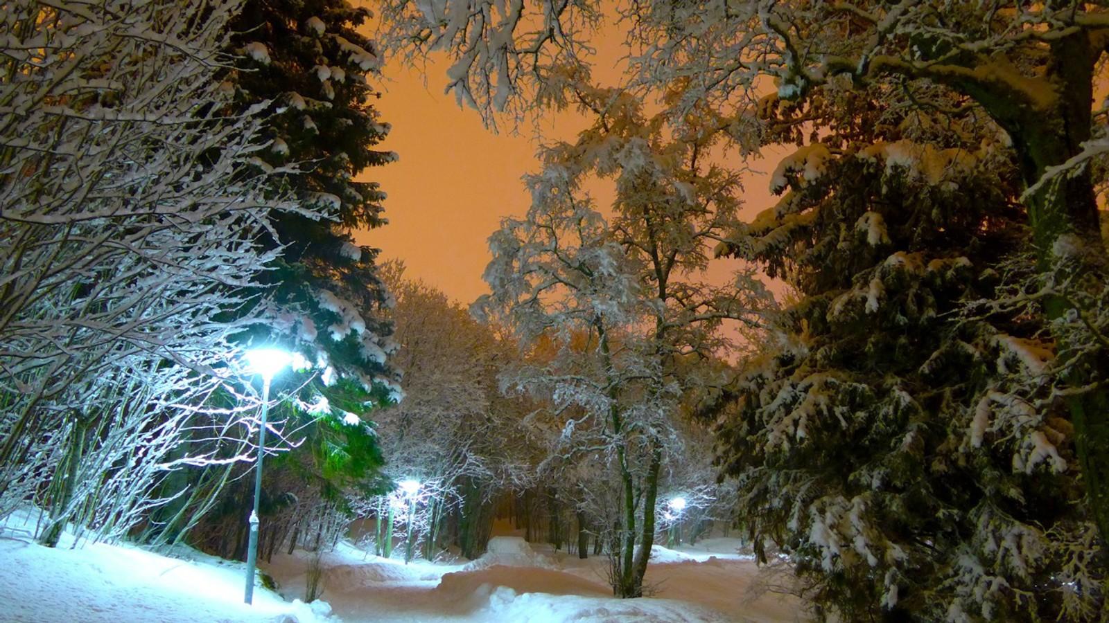 Snø og bylys på Dragvoll