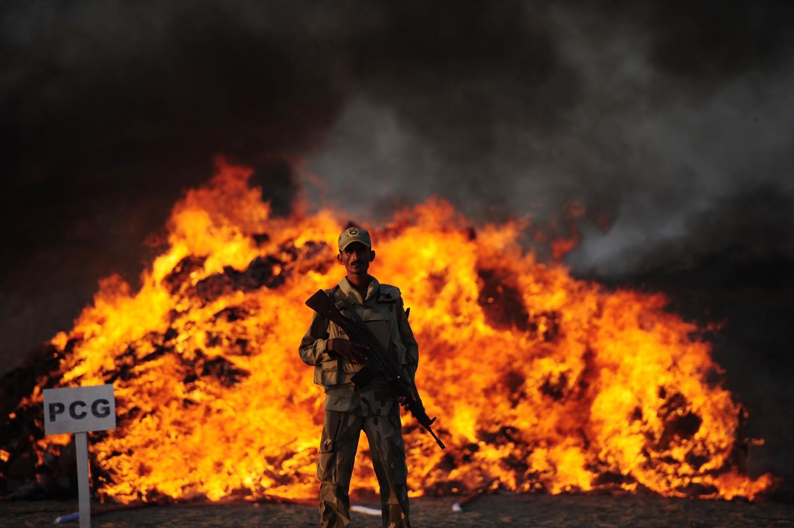 En pakistansk soldat fra antinarkotika-styrkene står ved siden av et bål med beslaglagt narkotika utenfor Karachi.