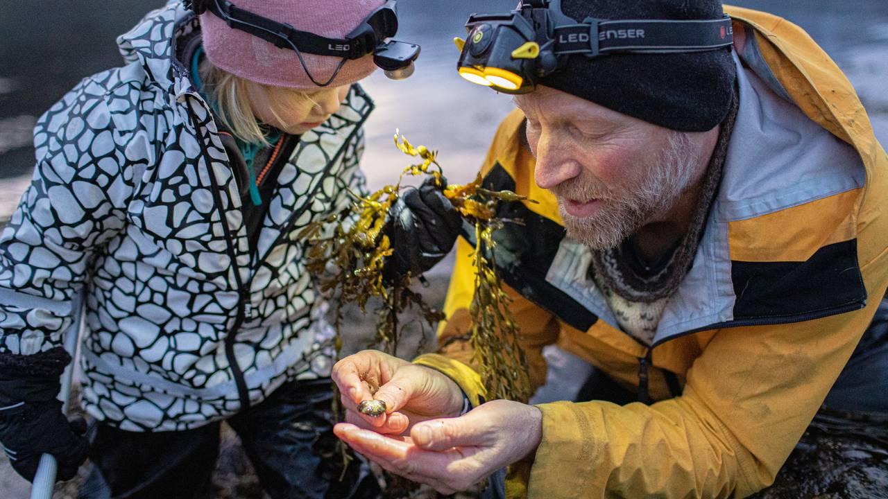 Audun Rikardsen og datter ser på en krabbe som Audun holder i hånden