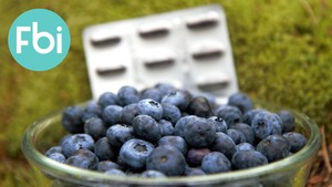 Forbrukerinspektørene: Kan piller erstatte blåbær?