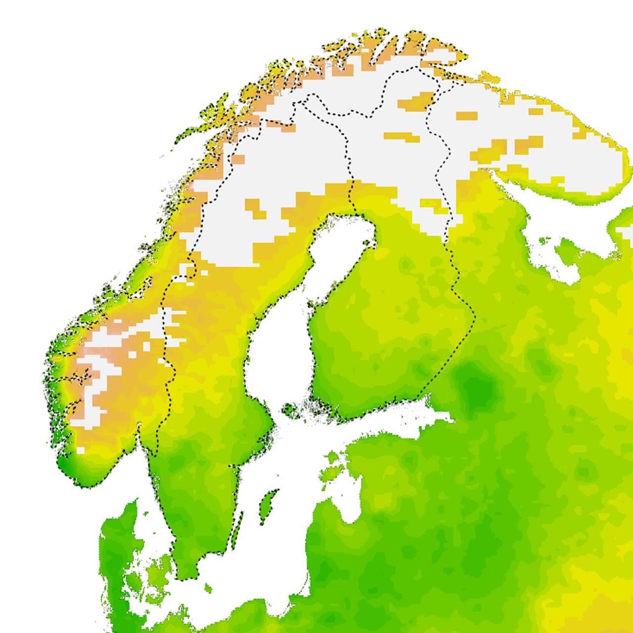 Fremskriving av klimamessige optimale forhold for flått årene 2080-2100 i Norge. Kartet er utarbeidet av Solveig Jore, Folkehelseinstituttet og Christian Wilhelm Mohr ved Norsk Institutt for Bioøkonomi.