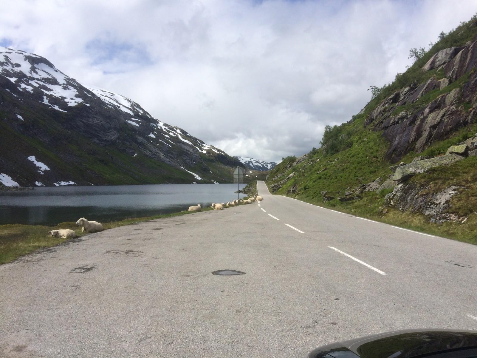 Gaularfjellsvegen frå Skaret mot Nystølsvatnet