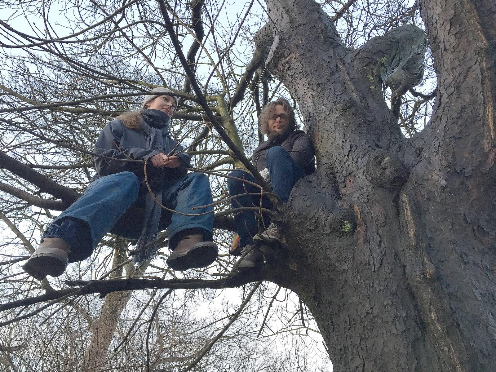 Da entreprenøren møtte opp for å hugge ned trær i den grønne lungen i Jekteviken i Bergen, ble de møtt av bystyrepolitiker Sondre Båtstrand (MDG), her til høyre, og Johanna Vatne som hadde klatret opp i dette treet i protest.