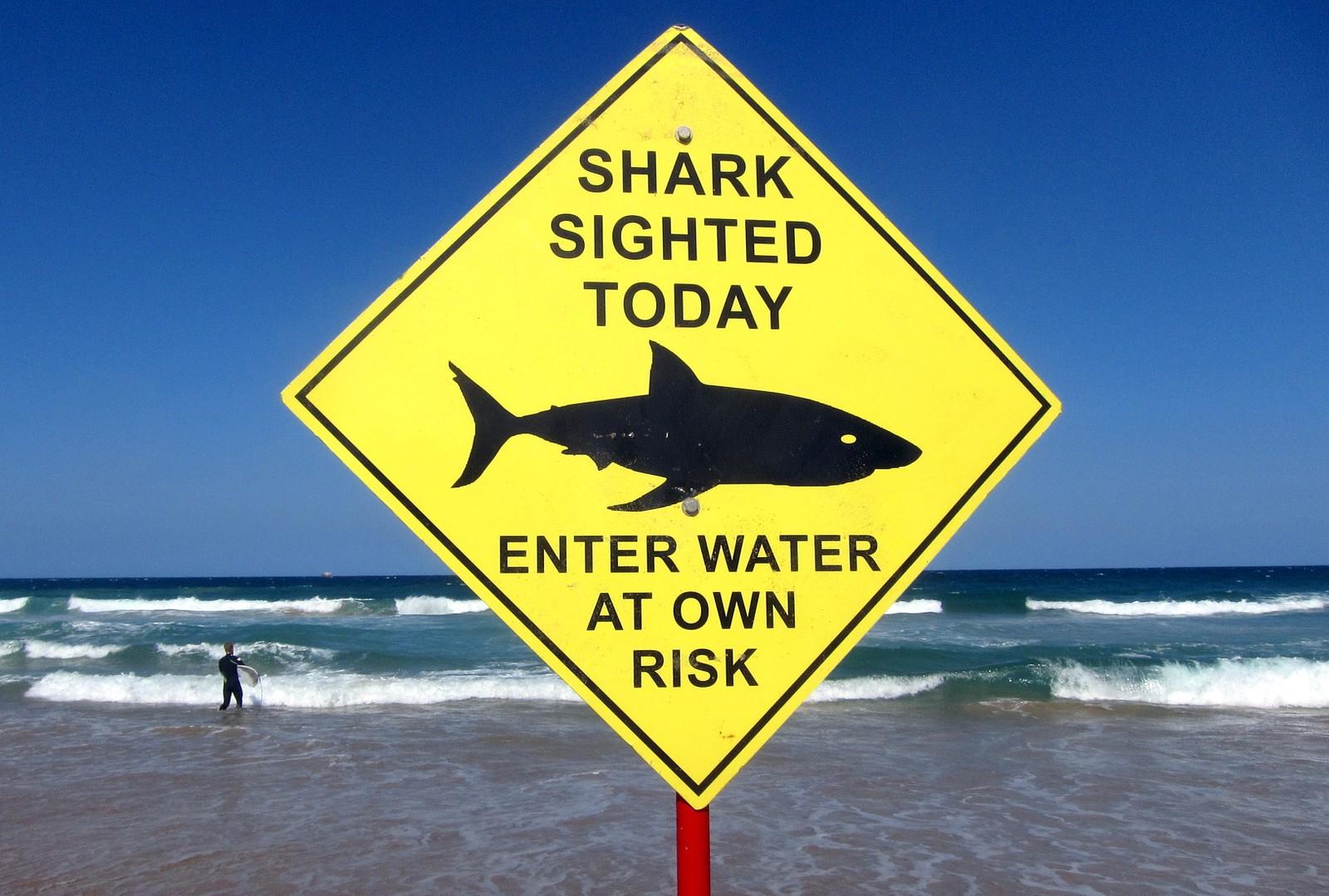 Jula er midtsommer i Australia og hvert år nyter millioner av mennesker høytiden på de mange populære strendene. Men den siste tiden har det blitt observert mye hai og vært haiangrep flere steder i landet. Da er det ikke like fristende å gå ut i vannet. En og annen surfer tar likevel sjansen.