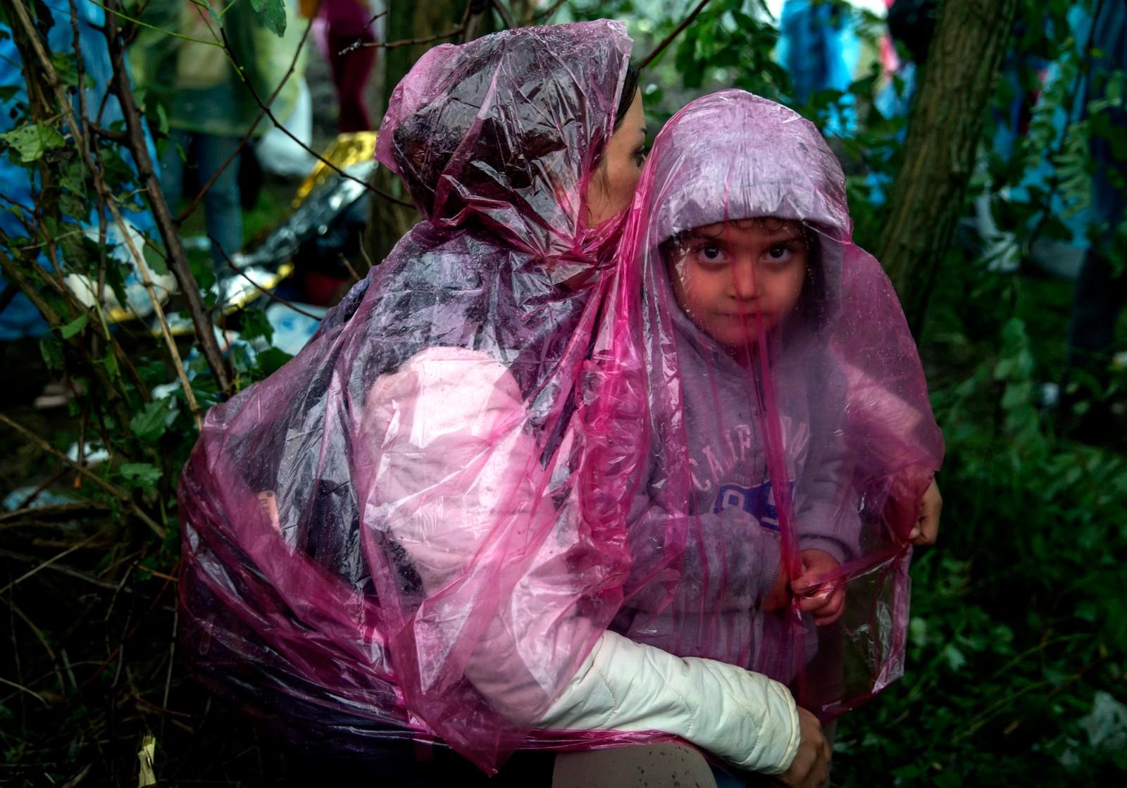 Flyktninger beskytter seg mot regnet mens de venter på å krysse den kroatiske grensen nær landsbyen Berkasovo i Serbia.