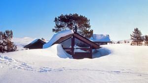 Arkitektens hjem: Jon Haug