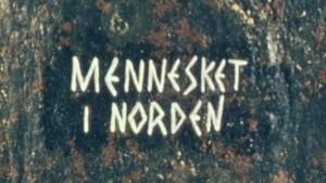 Mennesket i Norden: De, vi og vikingene