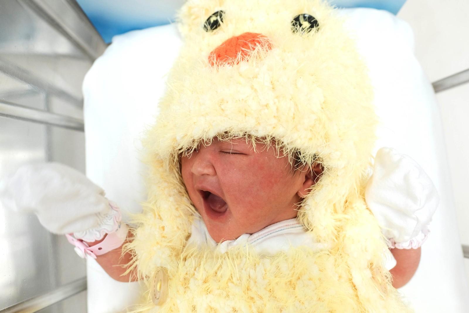 """En nyfødt baby i Bangkok i Thailand har fått på seg et kostyme. Den 28. januar går Kina inn i """"Hanens år"""". Det er omtrent ni millioner mennesker med kinesiske røtter i Thailand."""
