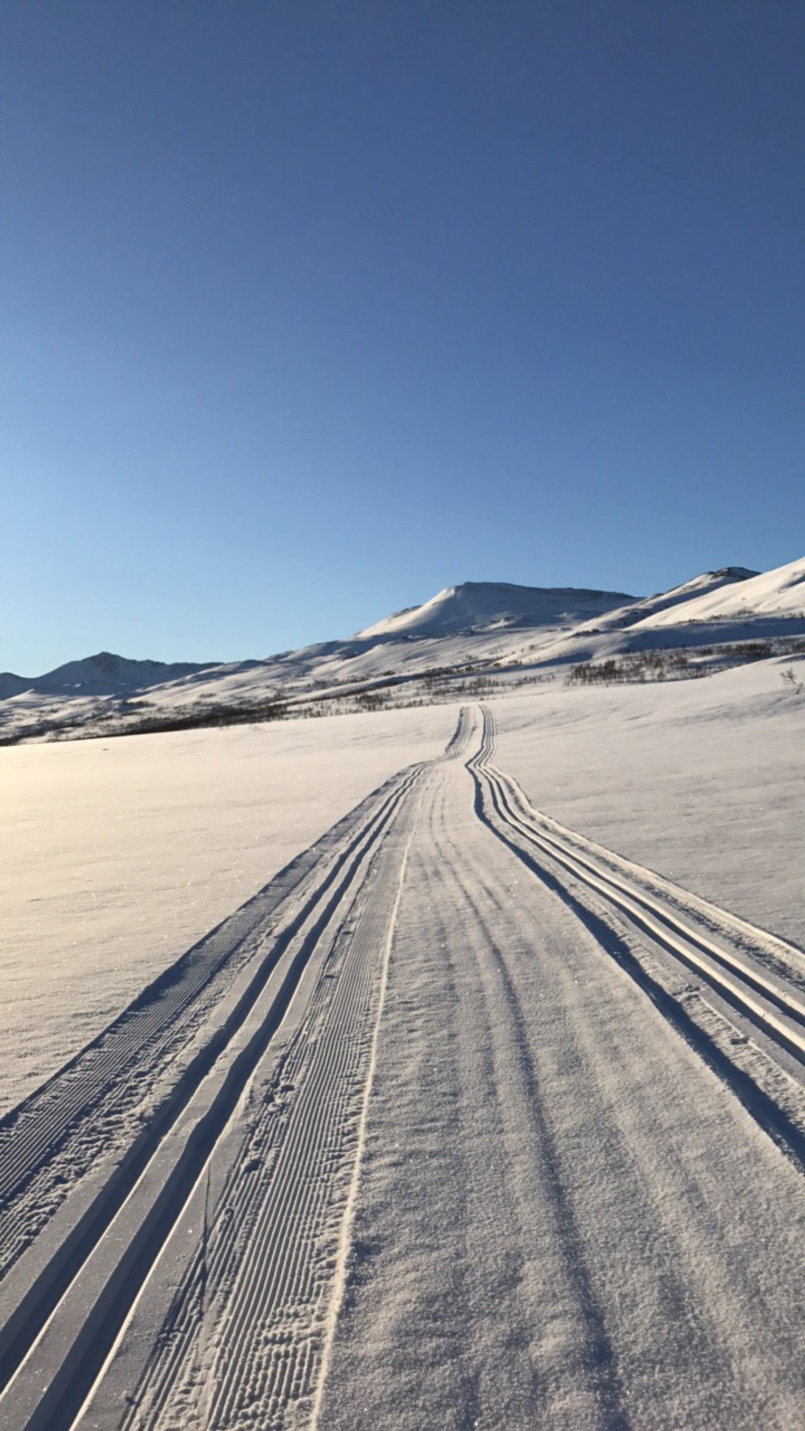 Svartbekkdalen i Rennebu/Gisnadalen