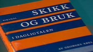 Ordimellom og linjelangs: Språket - eit spegelbilete av samfunnet