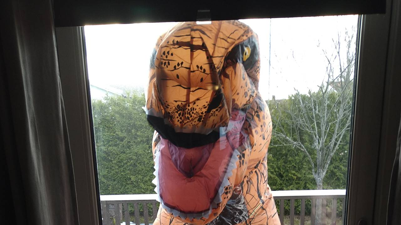 Venninnen til Janina Svandal kom på besøk utkledd som en dinosaur