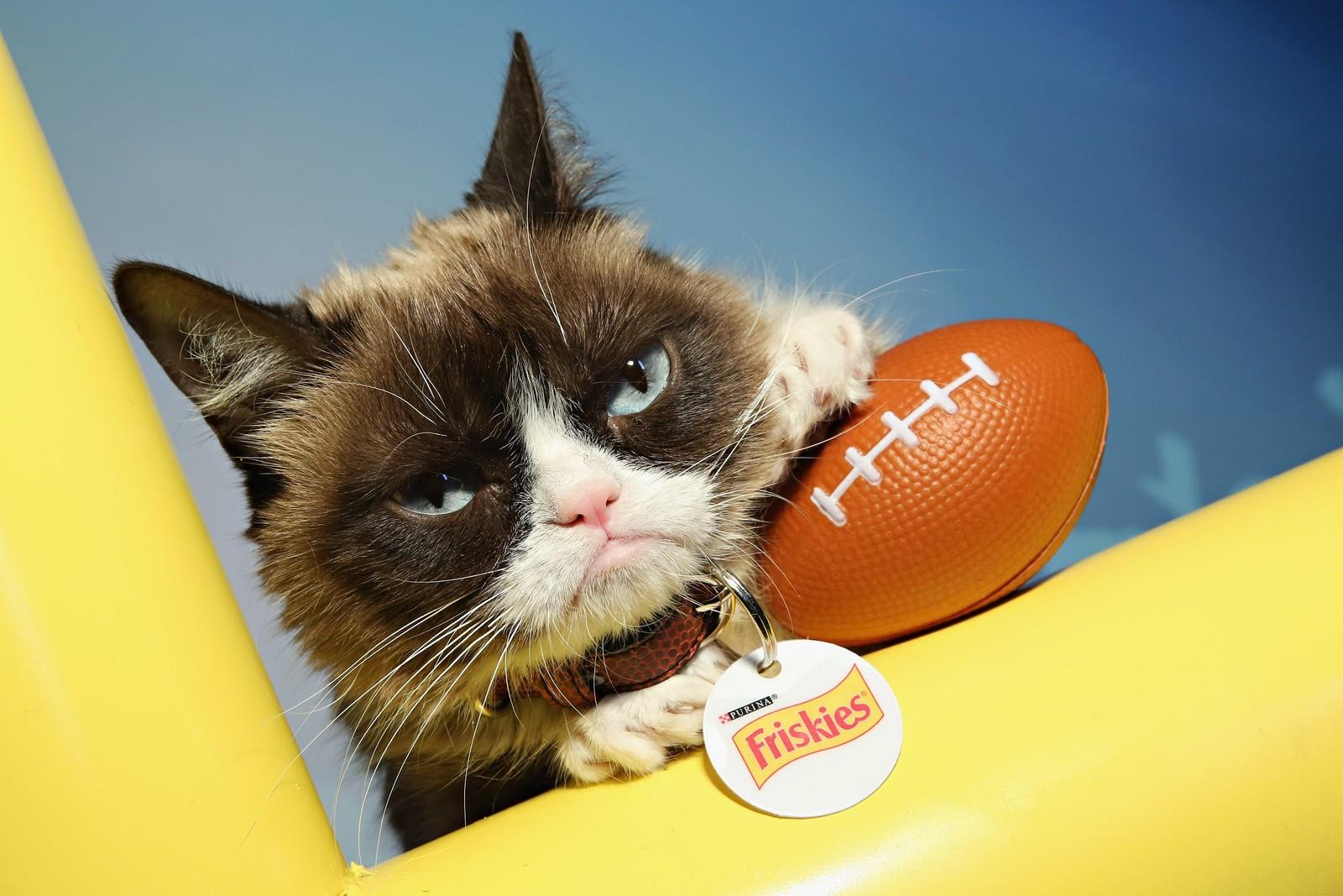 Nettfenomenet Grumpy Cat var med på å varme opp på en amerikansk radiostasjon i forkant av den 50. Superbowl-finalen, som finner sted natt til mandag norsk tid.