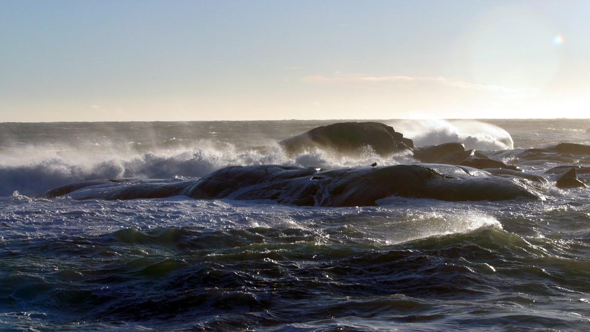 Nå kan du sjekke hvor høye bølgene blir