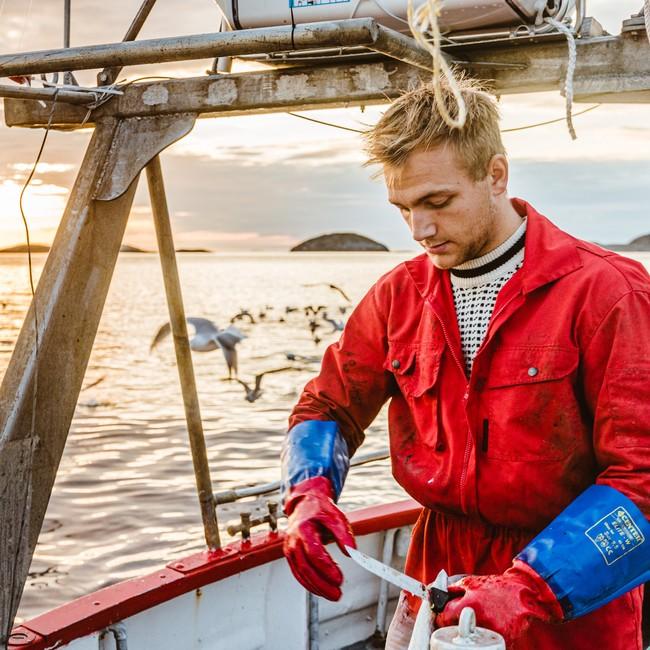Sander Elias Norø