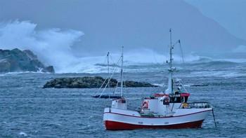 Lokkøya i Bø.