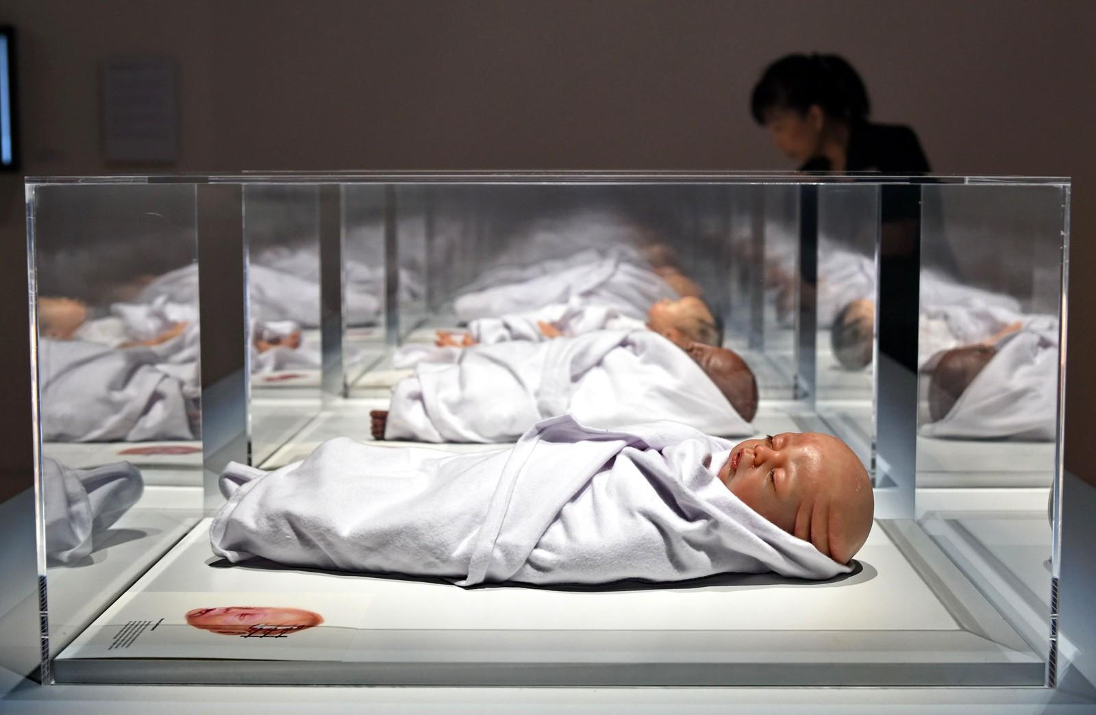 """Dette er kunstinstallasjonen """"Transfiguration"""" laget av Agatha Haines. Den er en del av en større utstilling kalt """"HUMAN+"""" på kunst- og vitenskapsmuseet ArtScience i Singapore. Mer enn 40 kunstnere stiller ut verker som handler om kunstig intelligens, menneskelignende roboter og genmodifisering."""