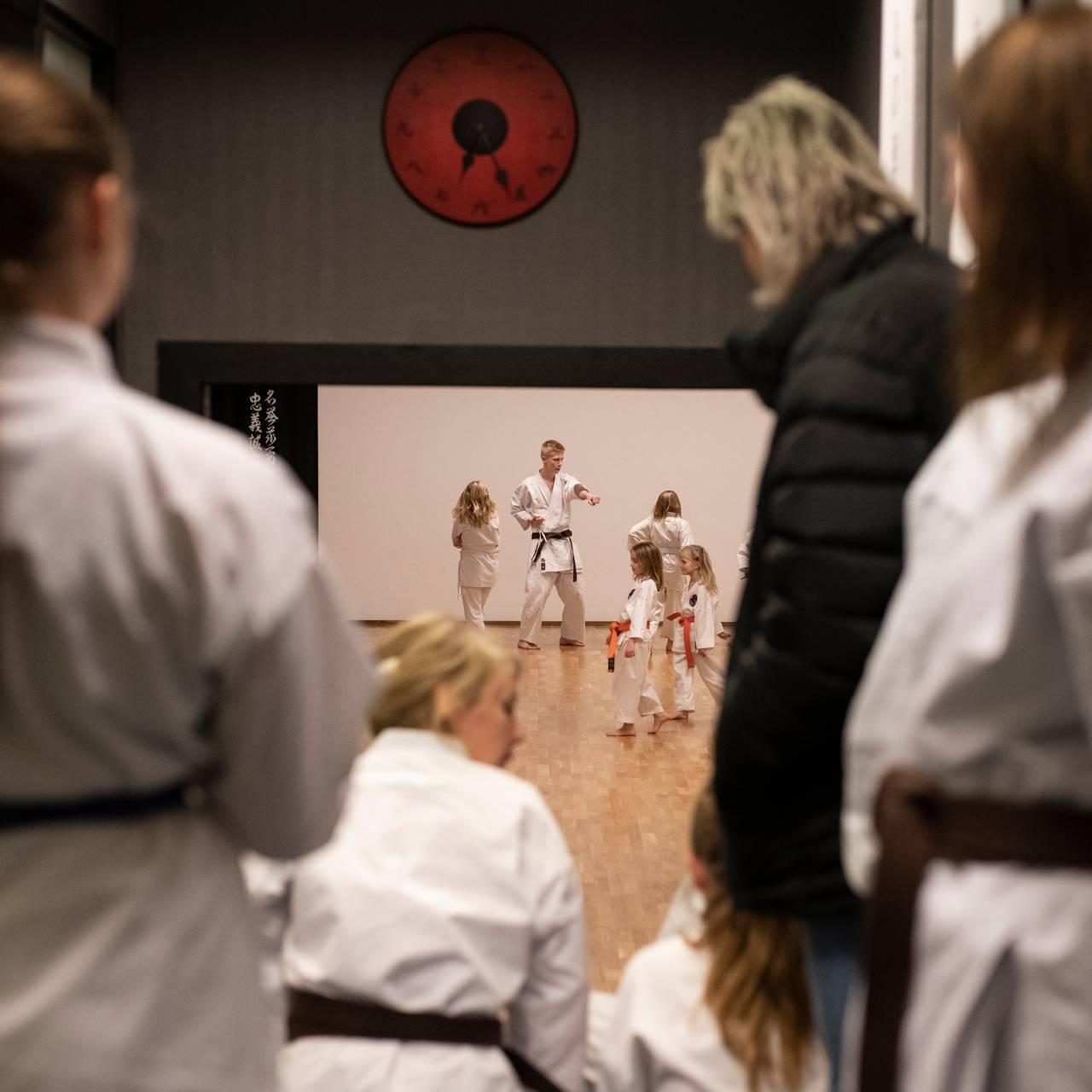 Telemark karate - dojo
