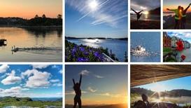 Yrbilder-plugg-sommarbilder2017 - Foto: https://www.yr.no/bilder/