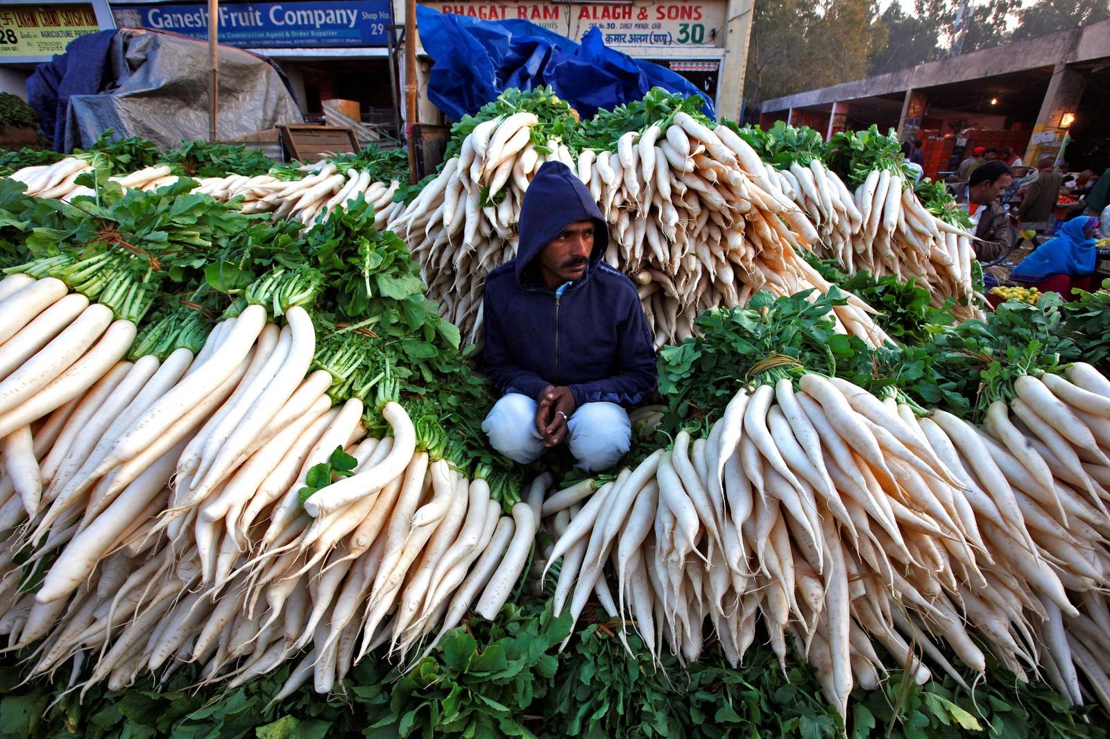 Han har tydeligvis spesialisert seg. Han selger reddiker på et marked i Chandigarh i India.