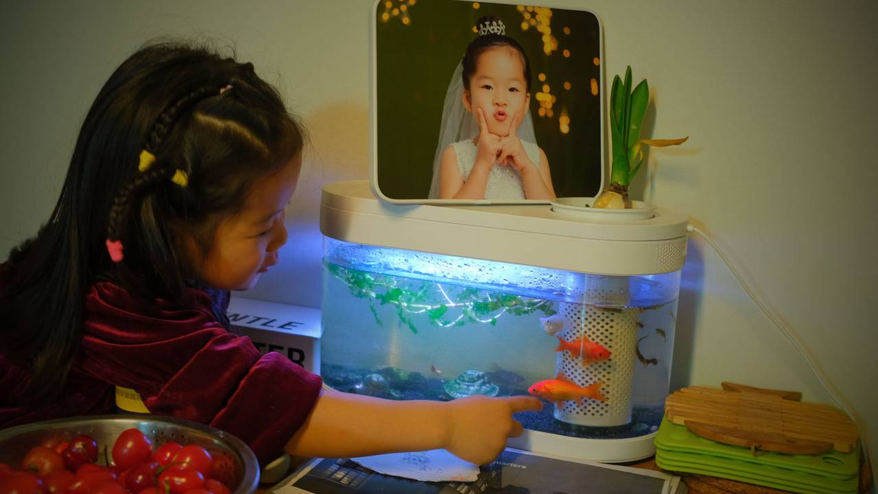 Xiaoxiao har gitt fiskane namn