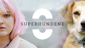 Superhundene: 8. Mathilde og Vito