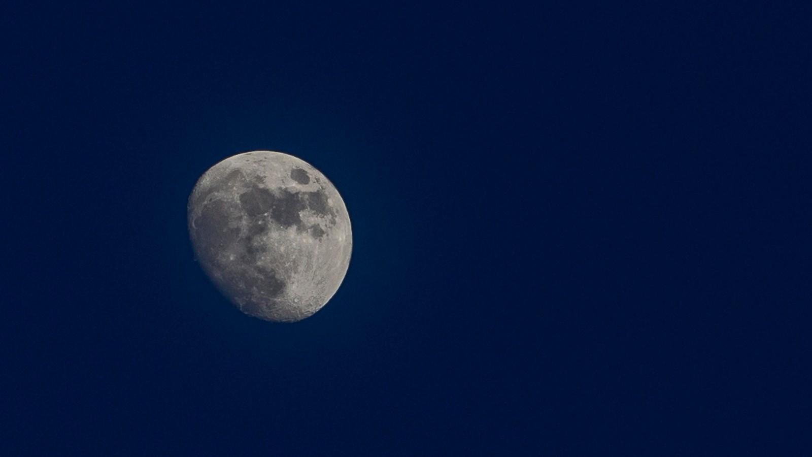 Månefint i Meldal
