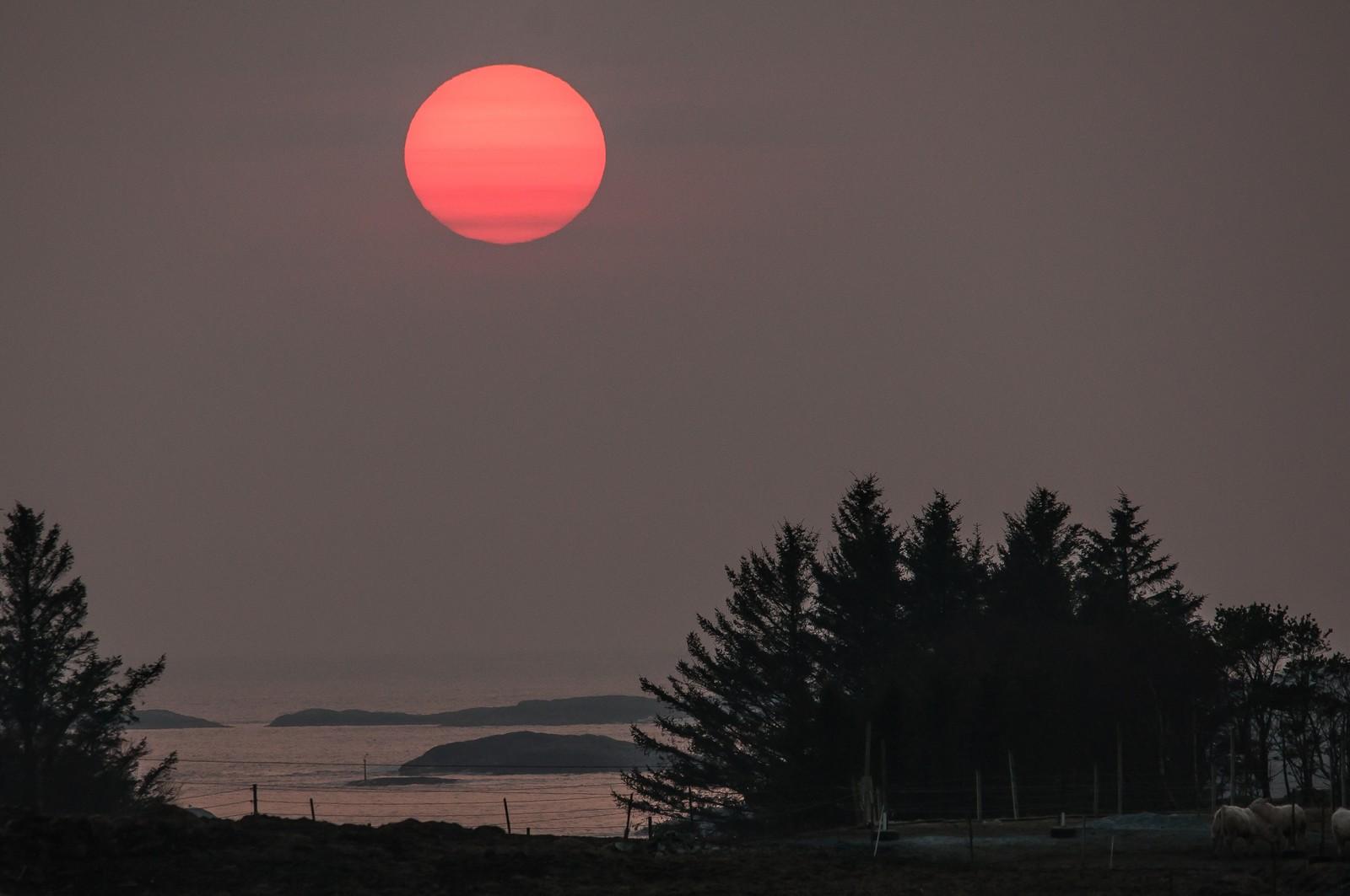 Kveldssol sett fra Karmøy.