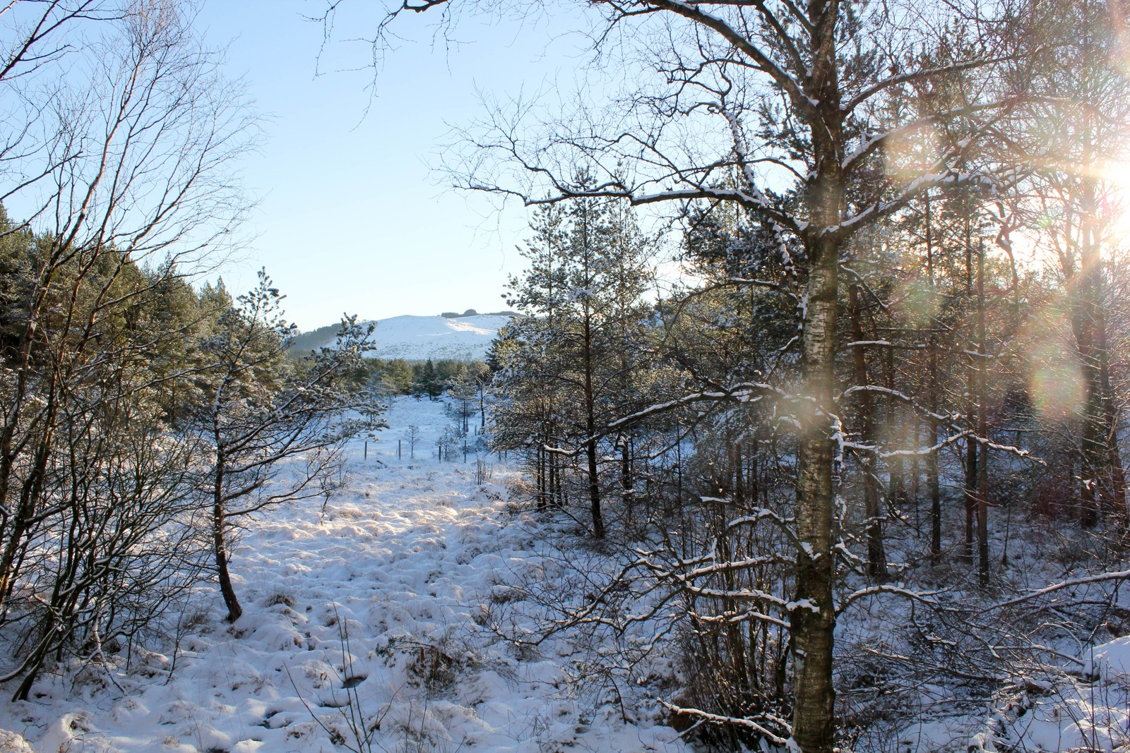 Turområde Foss Eikeland