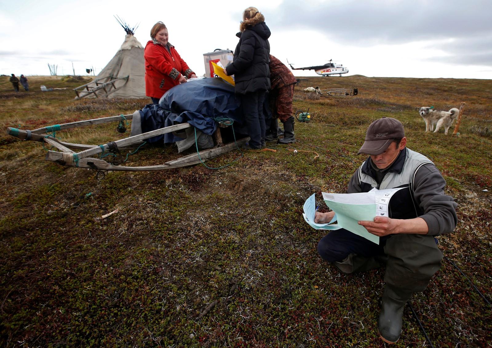 Reingjetere i Jamalo-Nenetsk-distriktet i Russland fyller ut stemmesedler i forbindelse med forhåndsstemming til parlamentsvalget. Bildet er tatt 12. september. Selve valgdagen var 18. september.