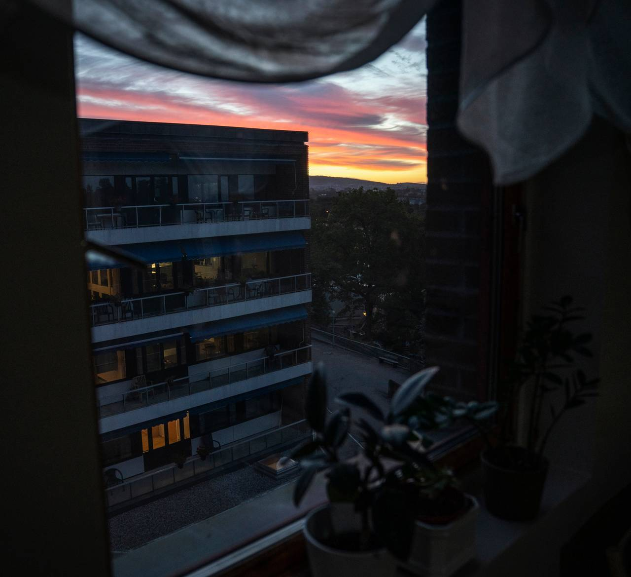Utsikt fra vinduskarm med blondegardiner og et par blomsterkrukker. Utenfor kan man se at himmelen er en blanding av kraftig rosa og gult.