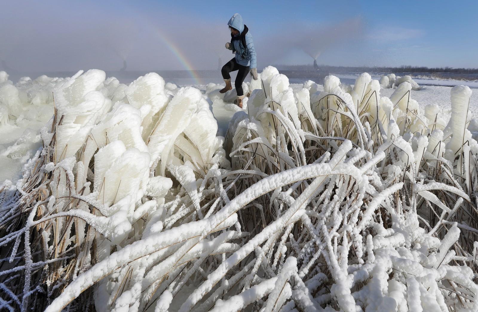 En kvinne er på tur i isdekket landskap ved byen Rudensk i Hviterussland.