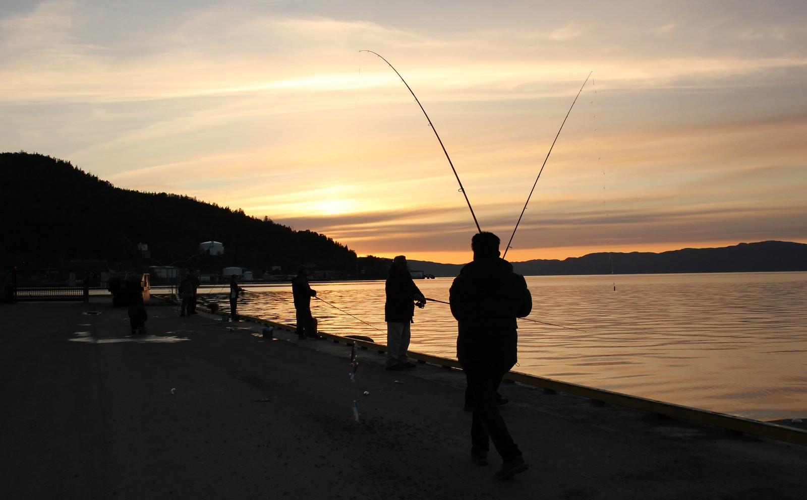 Asiatisk fiskerlag i Ila