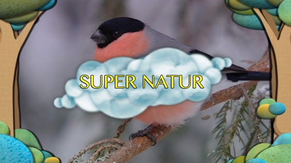 Serie med kortfilmer som presenterer ulike fugle-arter fra norsk natur.