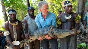 Tett på farlige dyr: Krokodille