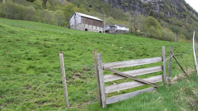 Hetle i Viksdalen. Foto: Ottar Starheim, NRK